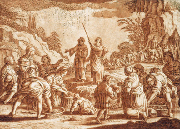The Israelites gathering manna, from a Bible engraving by Gabriel Bodenehr, ca. early 1700s.