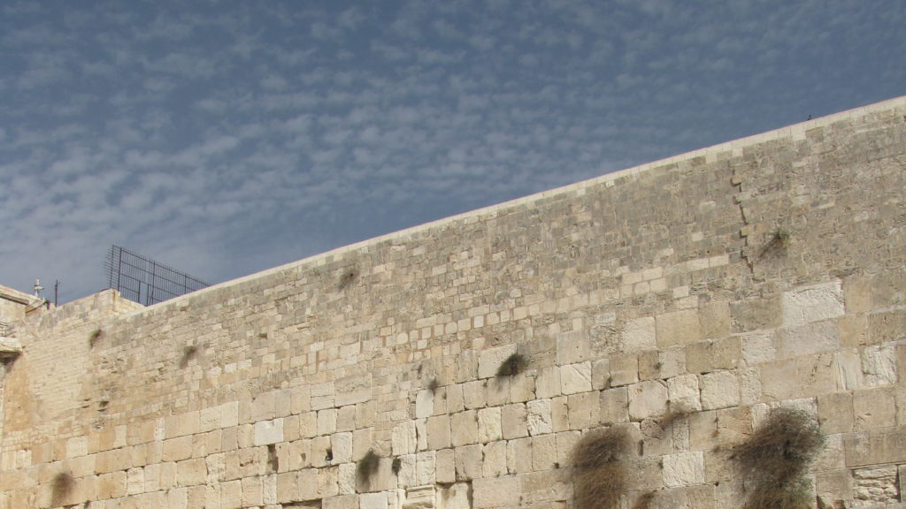 Why the Kotel Must Be Governed: A Response