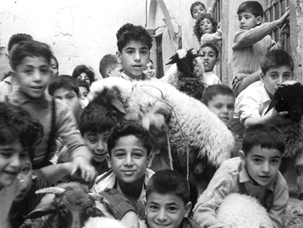 Children bringing lambs for Passover. (Courtesy of the Hamos Guetta Collection.)